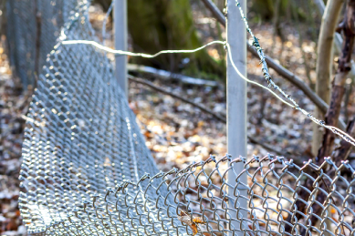 damaged-chain-link-fencing-in-Tampa-Florida